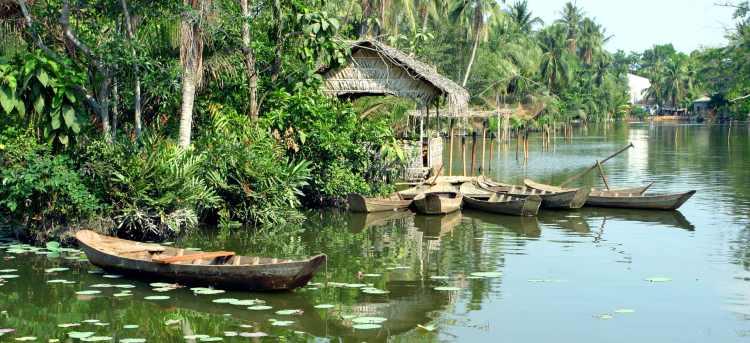 Mekong river | River Cruises in Vietnam