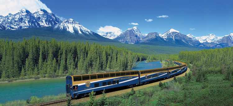 Rocky Mountaineer train travelling through the pine trees | Morant's Curve, Banff