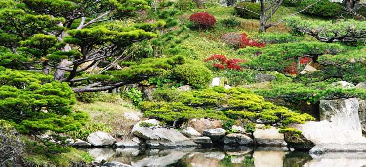 Japanese garden | Japan | Riviera Travel | escorted tour