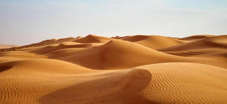 Wahiba sand dunes desert