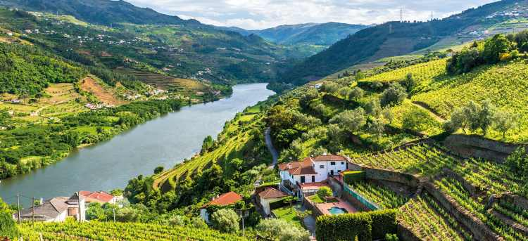 Douro river flowing through lush green hills | winery building built into hillside | Douro river | Douro Valley | Late Availability: River Cruises