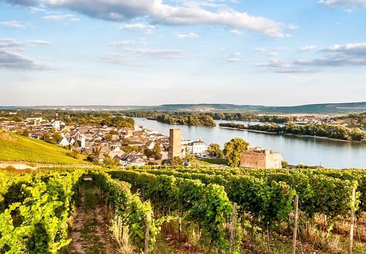 Rudesheim in germany