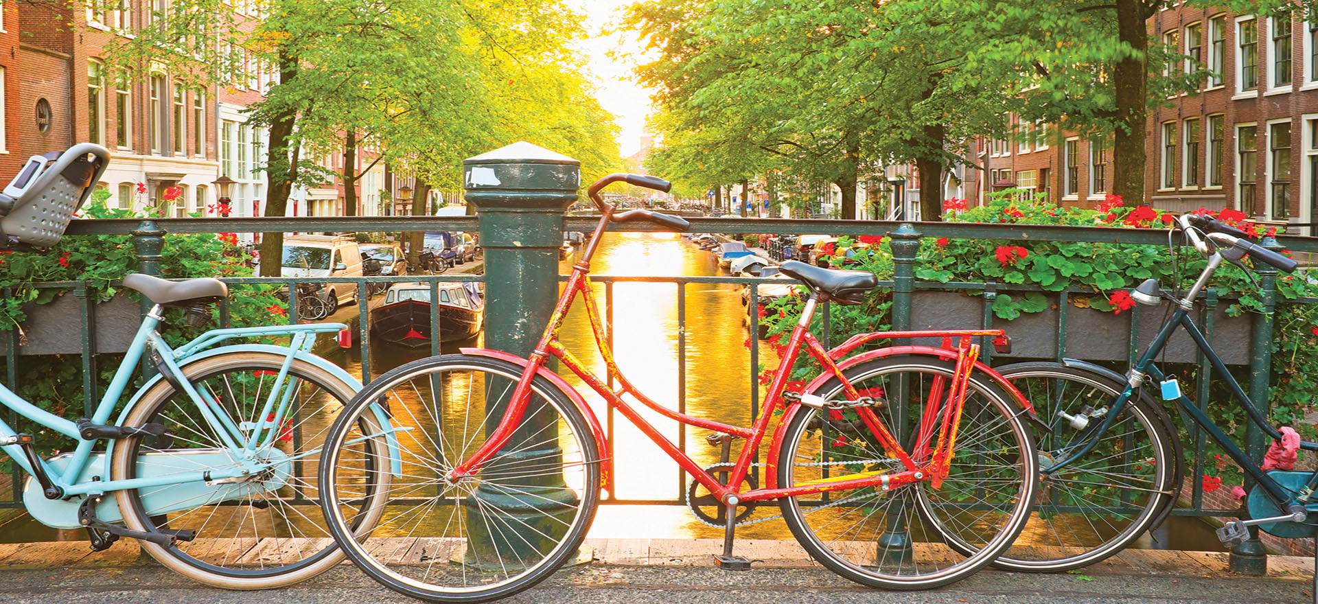 Coloured bicycles by the canal in Amsterdam