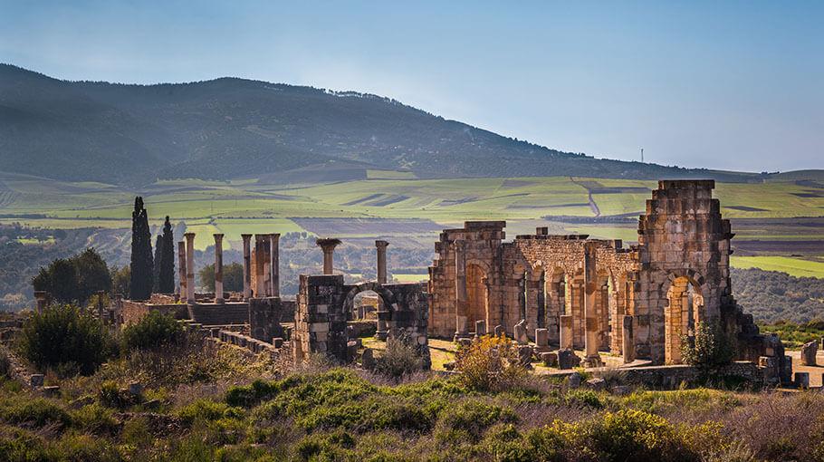 The Basilica of Volubilis