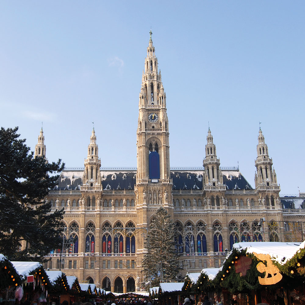 Vienna's City Hall in the snow