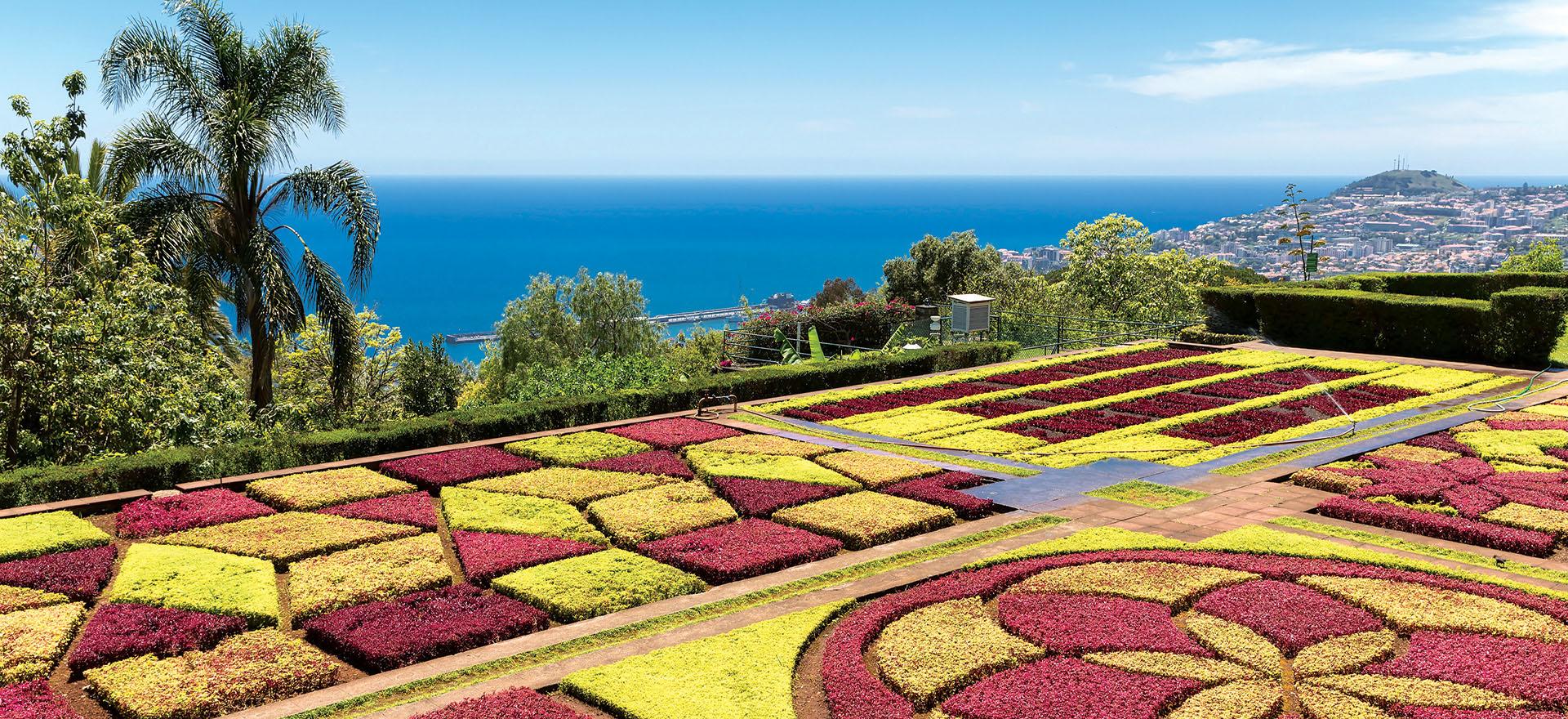 Madeira botanical garden | Funchal | Madeira | Riviera Travel | escorted tour