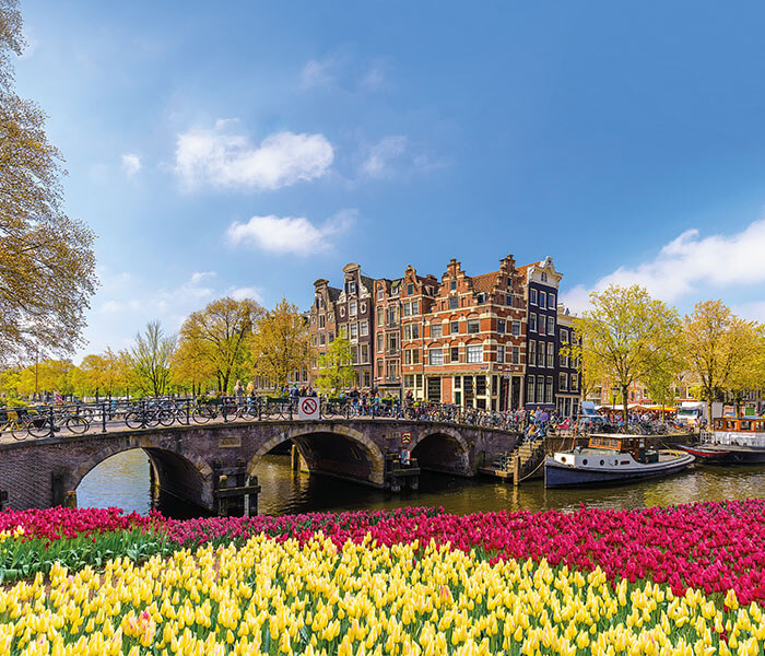 Tulips by old stone bridge in Holland | River Cruises in April 2019