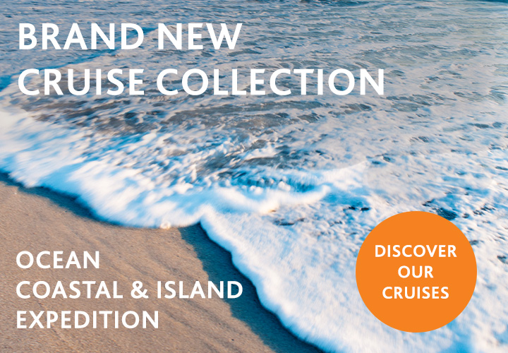 Brand New Cruise Collection