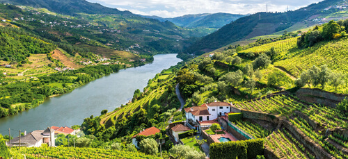 Douro river valley and vineyards