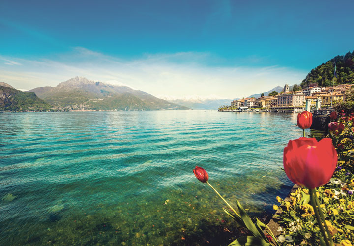 Lake Como and poppies