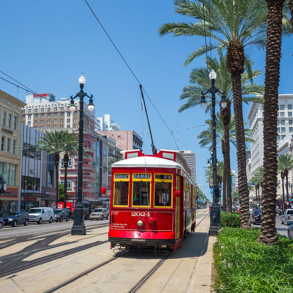 Red tram and palm trees in New Orleans