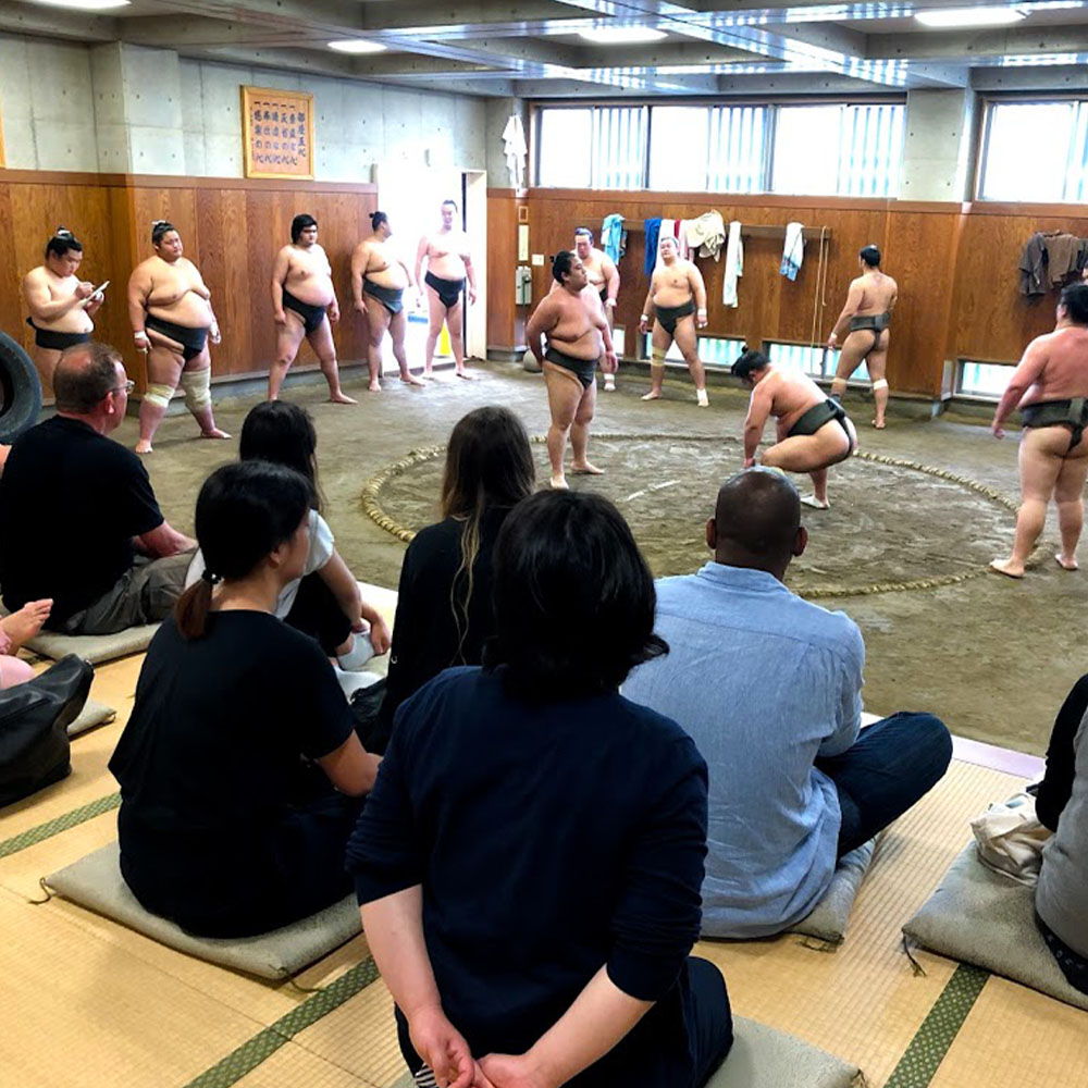 Traditional sumo wrestlers