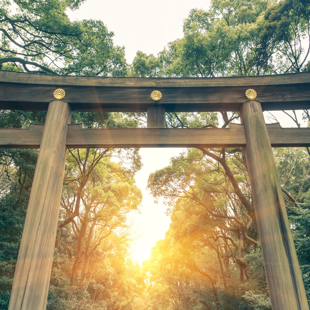 Entrance to Shinto Meiji shrine