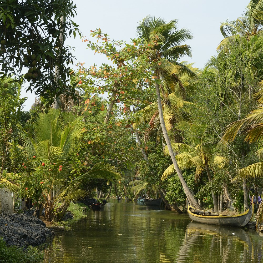 Tropical canal in Kumarakom