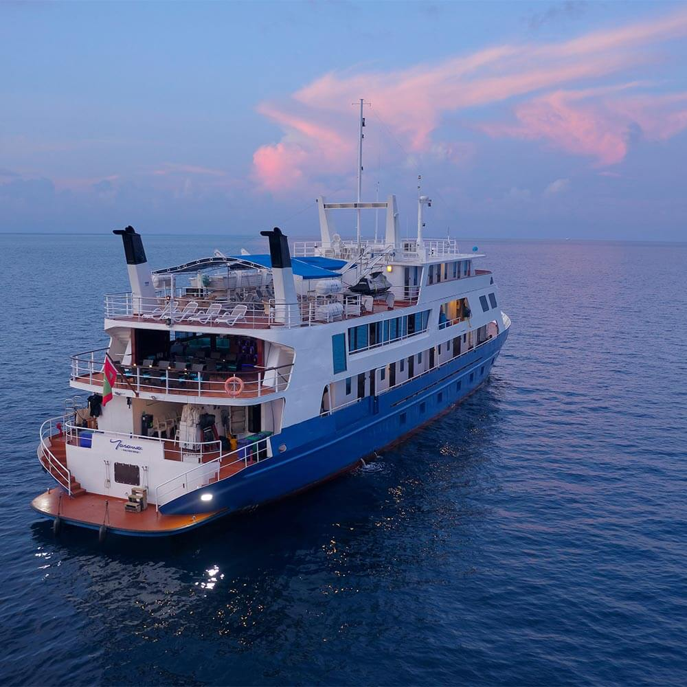 The MV Yasawa Princess cruising in the evening
